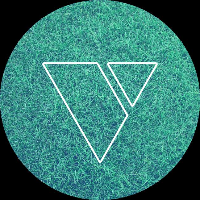 Vidiotism